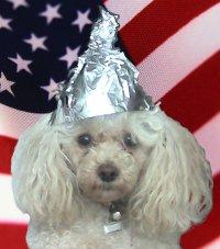 tinfoilhatdogpatriotic