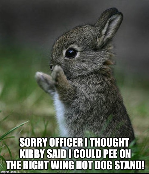 Poor baby bunny, hasn't learned not to listen to Kirby yet.