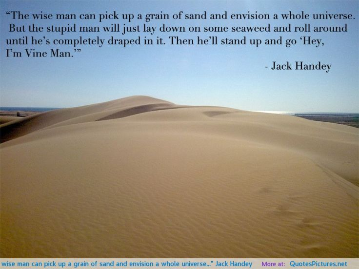 the-wise-man-can-pick-up-a-grain-of-sand-and-envision-a-whole-universe-jack-handey