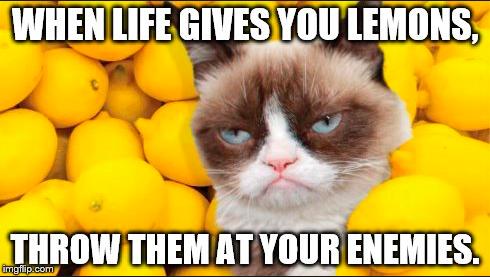 Yummy! Lemonade!