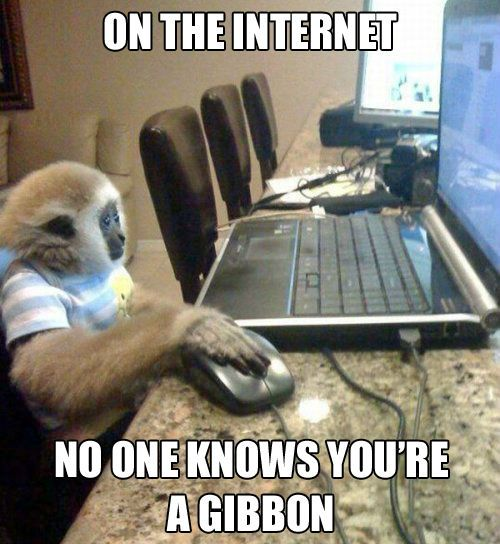 on-the-internet-no-one-knows-you-are-a-gibbon-funny-nonsense-meme-picture