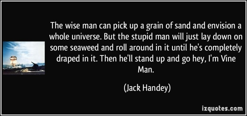 quote-the-wise-man-can-pick-up-a-grain-of-sand-and-envision-a-whole-universe-but-the-stupid-man-will-jack-handey-343847