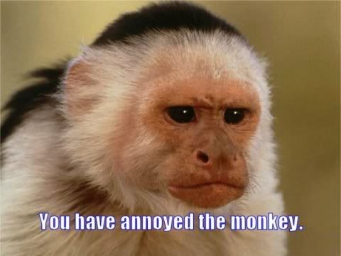 you-have-annoyed-monkey