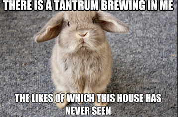 Tantrum Brewing