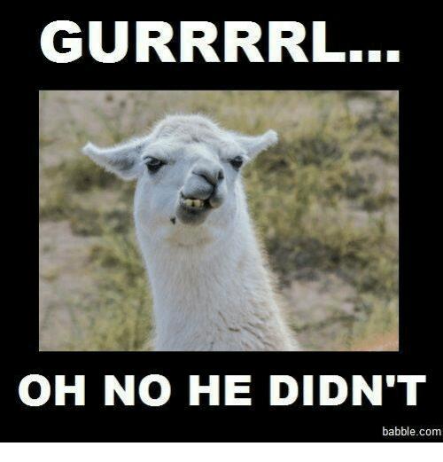 gurrrrl-oh-no-he-didnt-babble-com-13397550