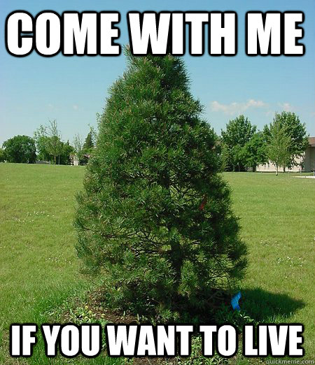 Funny-Tree-Meme-Come-With-Me-If-You-Want-To-Live-Picture-For-Facebook