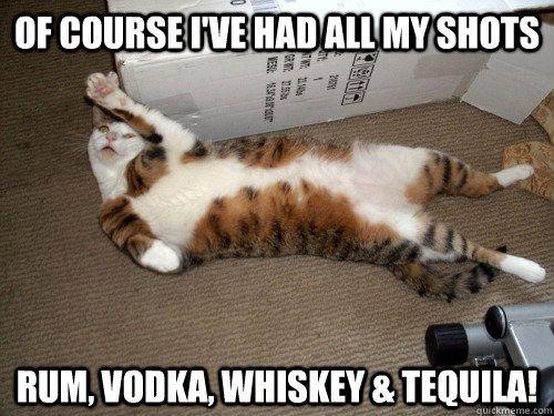 449fc678787cf700d153b1b2c39bc84e--tequila-vodka