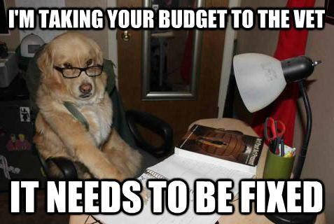 adjust-budget-meme2